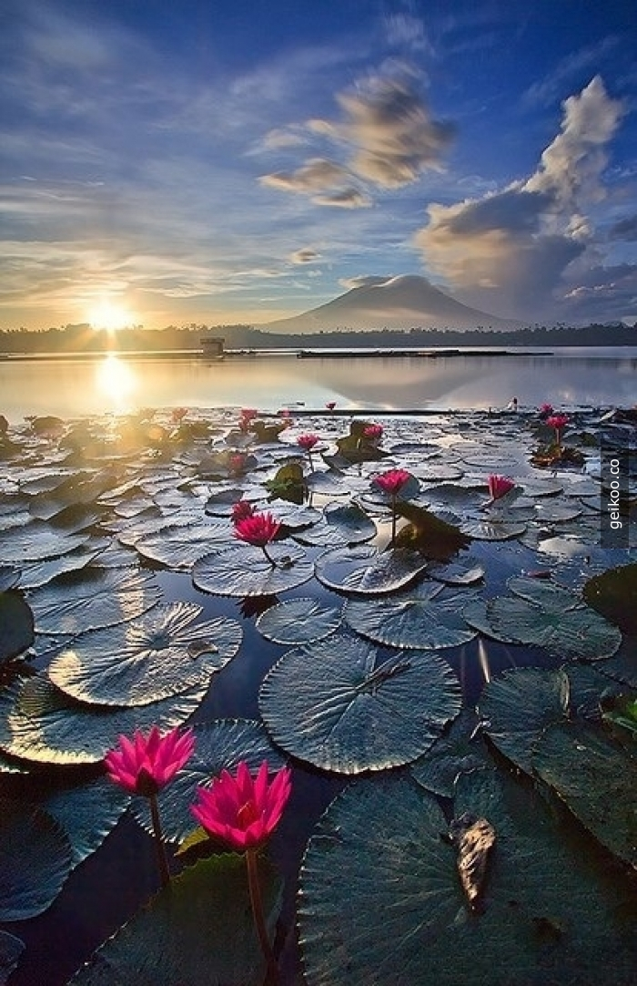 Sampaloc Gölü - Filipinler