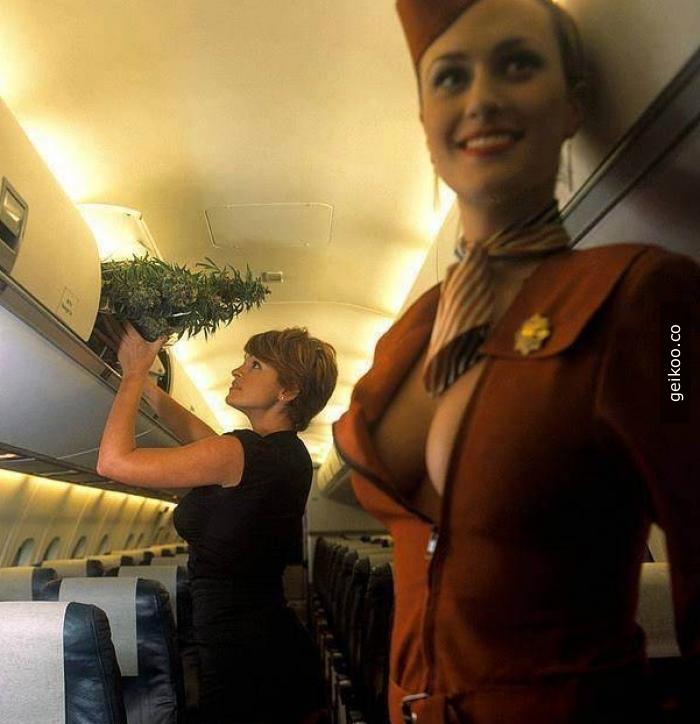 Bence bu hava yolu şirketi bizim ülkemize de hizmet versin