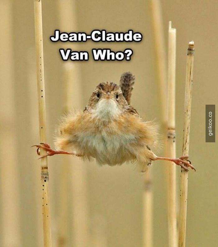 Jean-Claude Van Damme kim ?