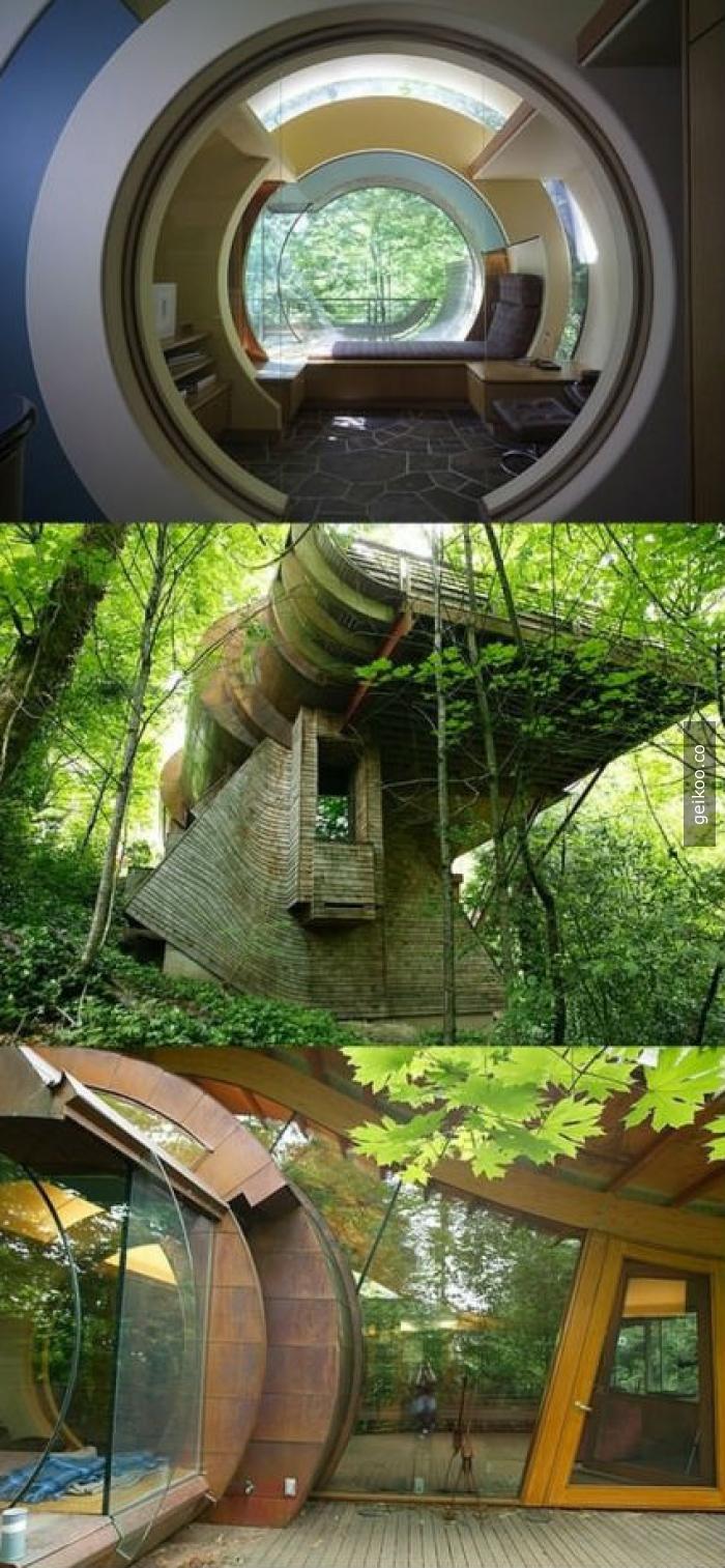 Bir hobbit ve bir elf birlikte ev inşa etmeye kalkarsa