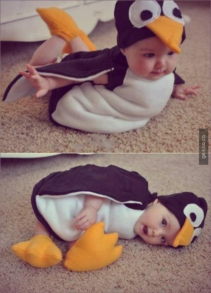Küçük penguen