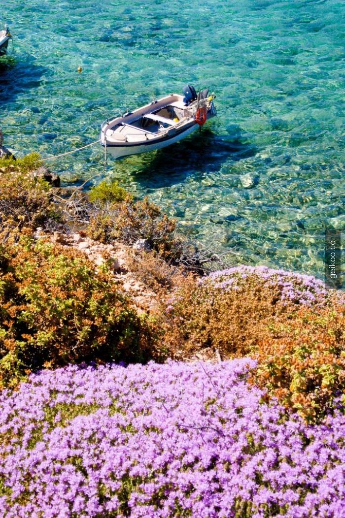Amoopi, Karpathos, Yunanistan