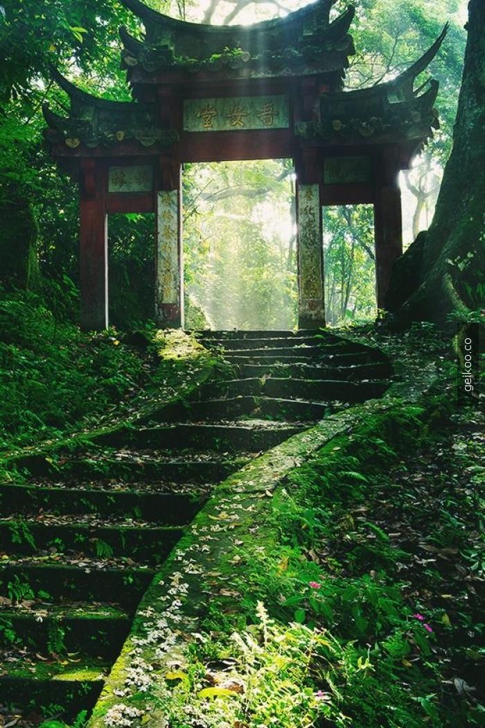 Eski bir Japon bahçesi