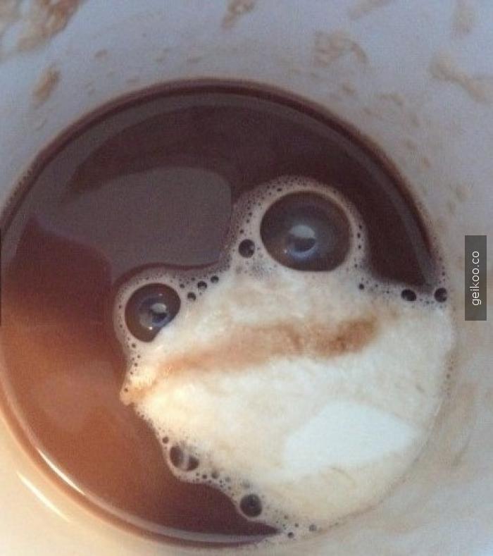 Gelmiş geçmiş en iyi cappuccino köpüğü
