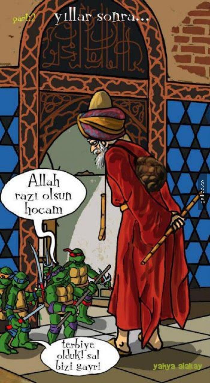 ninja kaplumbağa terbiyecisi