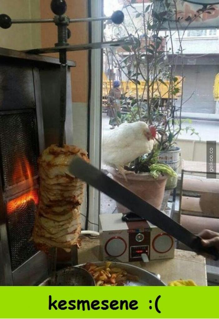 tavuk dönmesin