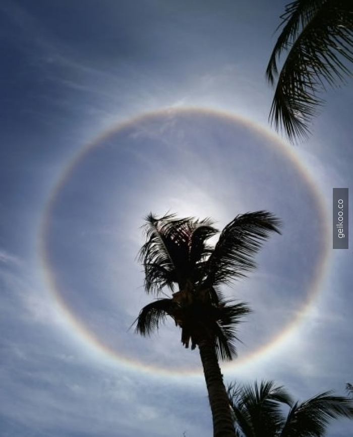 Tanzanya'da çekilmiş 360 derecelik gökkuşağı fotoğrafı