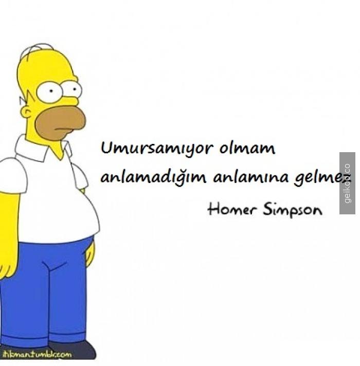 Homer bana tercüman olmuş