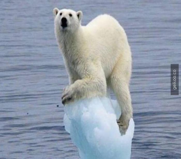 Buz bırakmadınız lan!