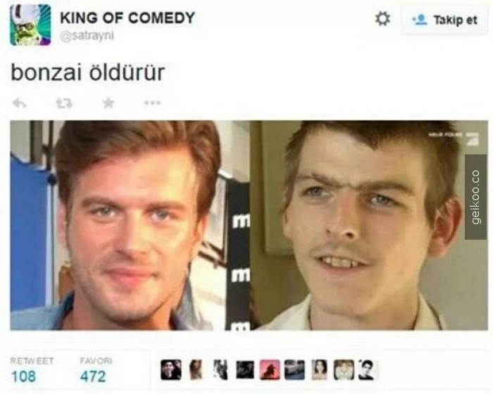 bonzai öldürür